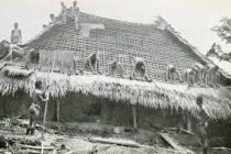 A look at 2 Different historical accounts about the Origin of the Igbo tribe?